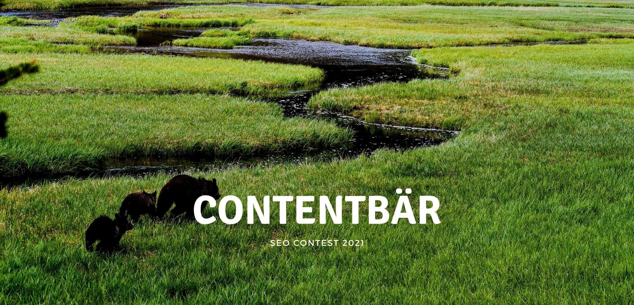 Contentbär – SEO Contest 2021 – Go!